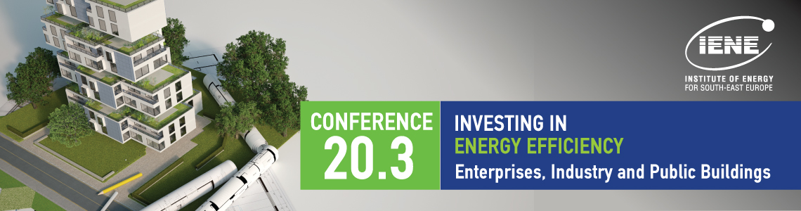 Investing in Energy Efficiency: Enterprises, Industry and Public Buildings