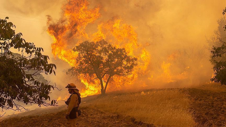 How Climate Change and Human Activity Fuel Wildfires