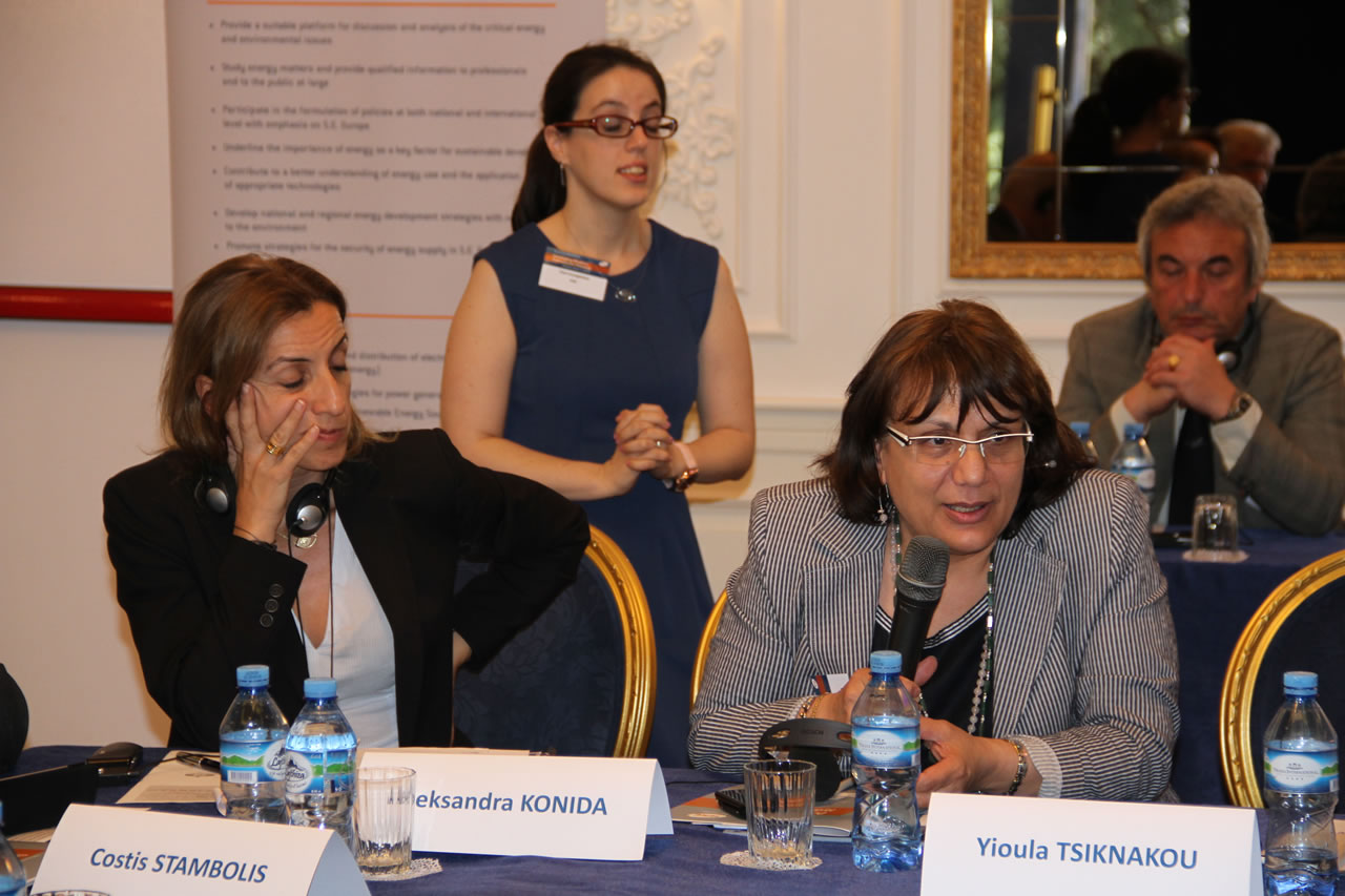 Mrs. Anna Siganou-Kamileri, Director of Unit, New Business Development,& Subsidiaries, Public Power Corporation (PPC), Greece